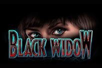 Черная Вдова – онлайн игра в Вулкан Удачи